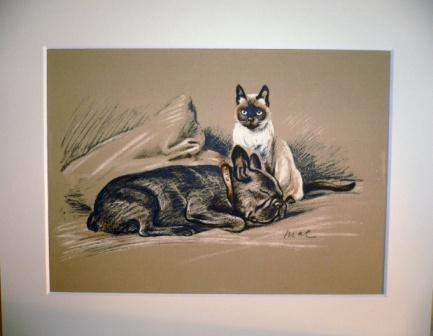 Bulldog and siamese cat Signed mounted 1936 Lucy Dawson Berbay's Lad dog