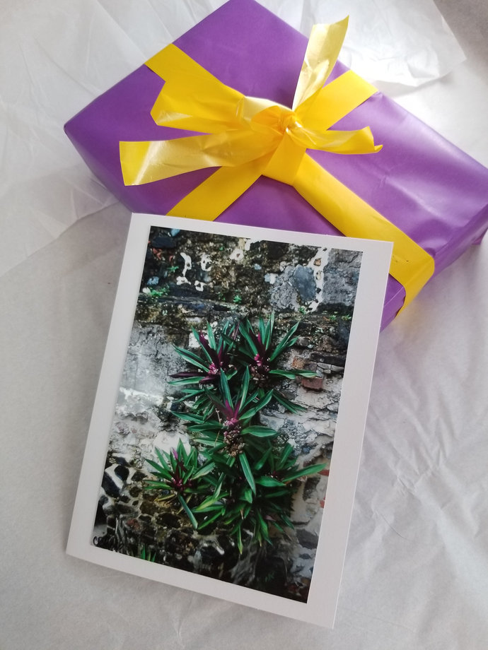Greeting Card * Personalized Text * Caribbean Plant * Photo Card * Blank Card