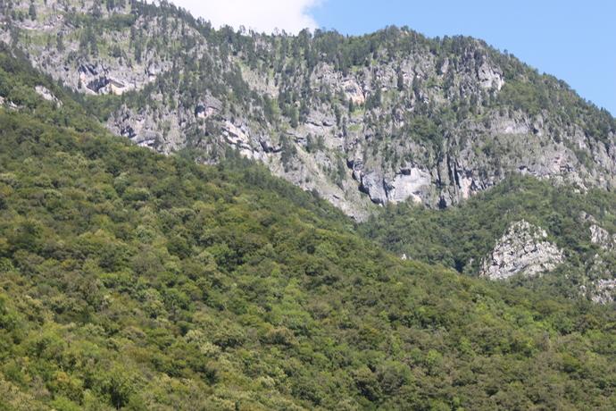 Photo mountain2