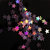Starz Black - Holographic Star Shaped Loose Cosmetic & Craft Glitter