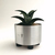 Modern Metal Succulent Planter Made from Recycled Metal Pipe