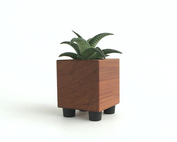 Cube Shaped Minimalist Dark Solid Wood Baby Succulent Planter
