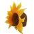 Sunflower Shape Baby Children Bonnet Hat -- Hand Wet Felted Wool Hat
