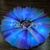 Jellyfish LED Light Up Tutu - Light Up Tutu - Adult Tutu