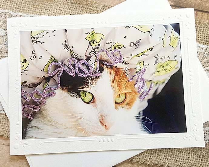 Glitter Accents Shower Cap Kitten Fine Art Photography Card, Cat, Birthday,