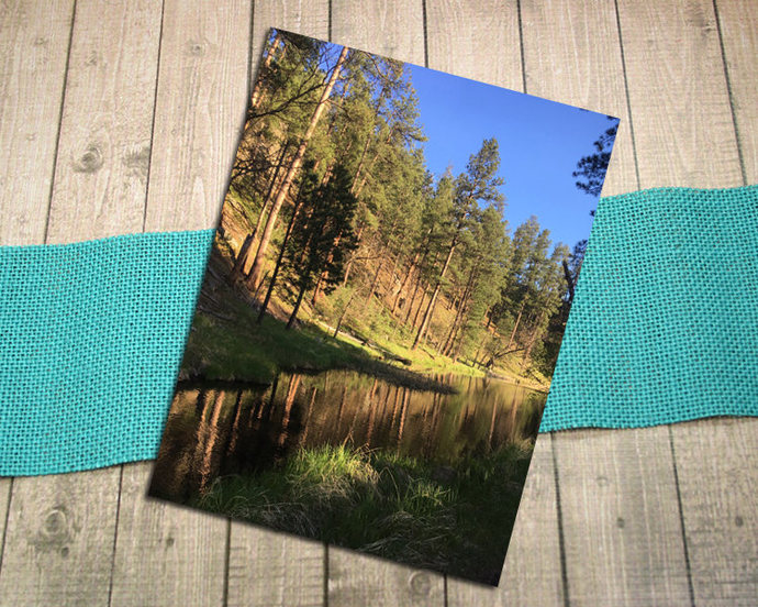 Fish Hook Picnic Area Fine Art Photography Postcard, Custer State Park, Black