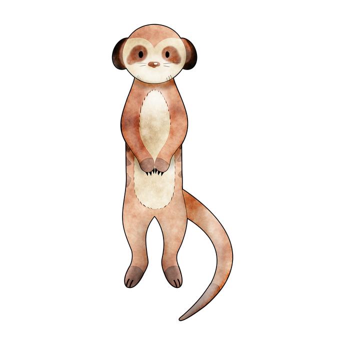 Meerkat - Suricata Suricatta - Safari Animals Series - Wall Decal - Great For
