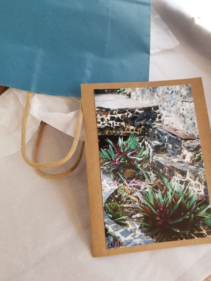 Greeting Card * Personalized Text * Tropical Plant * Photo Card * Blank Card