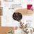 Kurukynki wax seal - Hidden - perfect for wrapping & happy mail