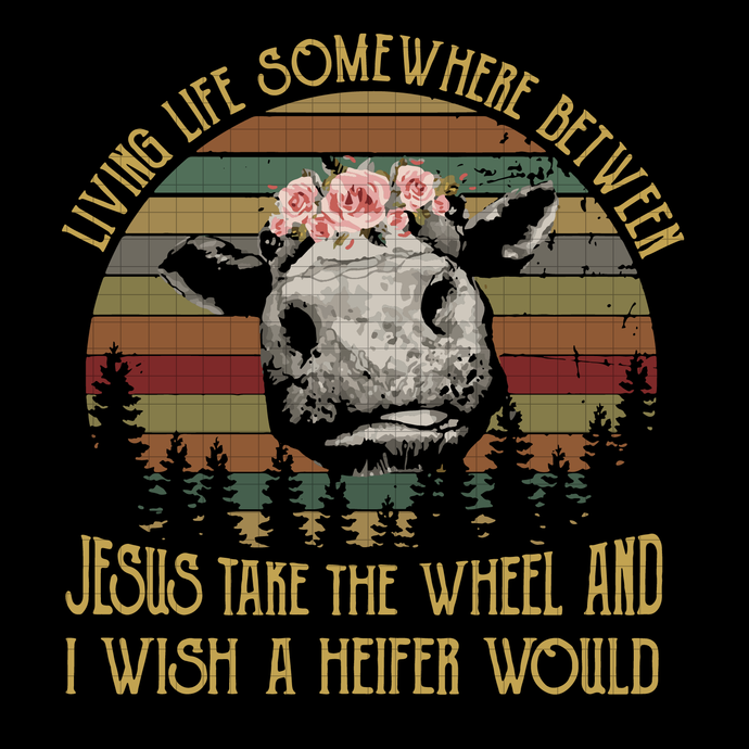 Living life somewhere between jesus take the wheel and i wish a heifer would