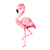 Flamingo with Flowers - Flaminke - Safari Animals Series - Wall Decal - Great
