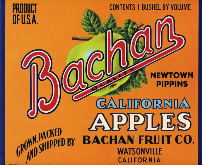 Bachan Apple Fruit Crate Label with Green Apple