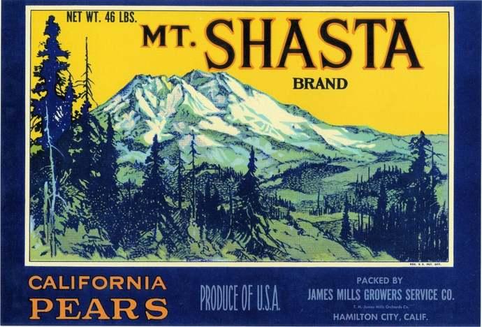 Mt. Shasta Pear Fruit Crate Label 2 Different Sizes - Hamilton City California