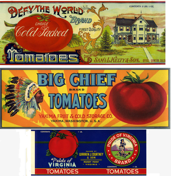 Vintage Tomato Can Labels Collection - 20 different labels