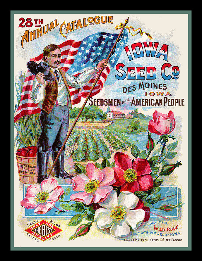 Iowa Seed Company for the USA Refrigerator Magnet
