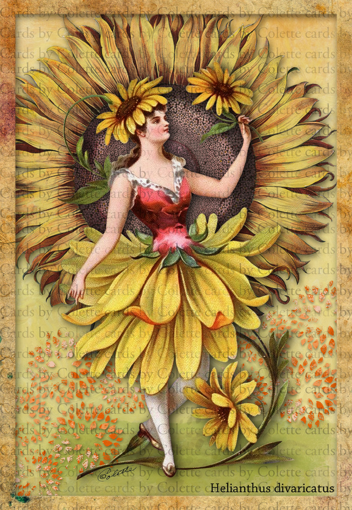 Lady and Sunflowers2391