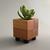 Cactus Planter, Eco Friendly Wood Planter, Wood Succulent Pot, Small Modern Pot,