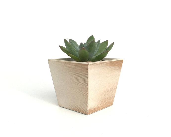 White Wood Succulent Planter in Hand Painted Distressed Finish