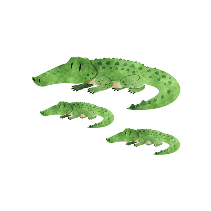 Crocodile with Babies Set - Set of 3 Decals - Safari Animals Series - Wall Decal