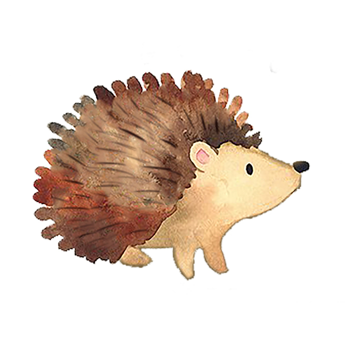 Hedgehog Pair - Set of 2 Decals - Safari Animals Series - Wall Decal - Great For