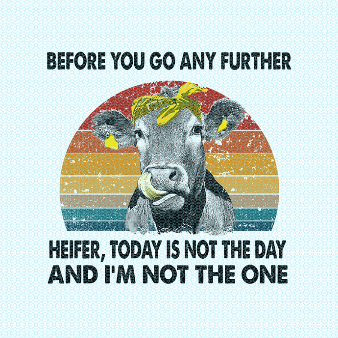 Before you go any further Heifer, today is not today and I'm not the one, Not