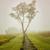 Calming Morning Rural - Farmhouse Landscape Photograph Wall Art Prints