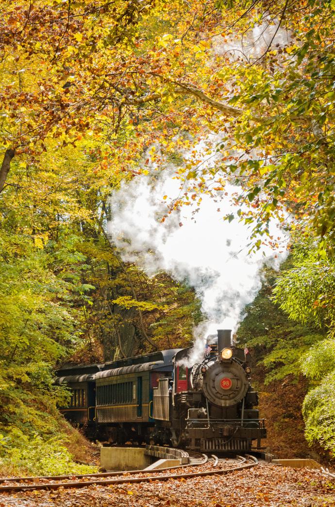 Steam Train with Autumn Foliage Rural - Farmhouse Landscape Photograph Wall Art