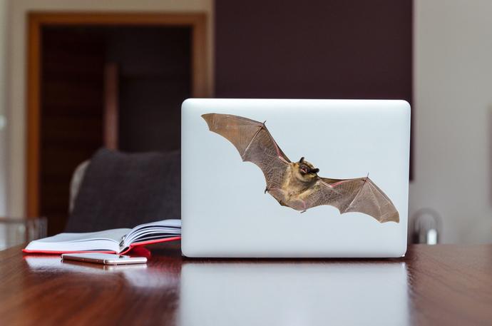 """Realistic Vampire Bat - 5"""" tall x 15"""" wide"""