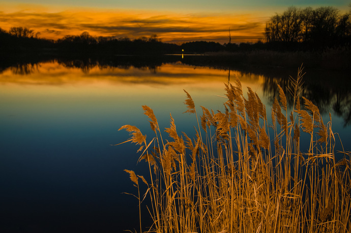 Sunset at Reedy Point Pond Rural - Farmhouse Landscape Photograph Wall Art