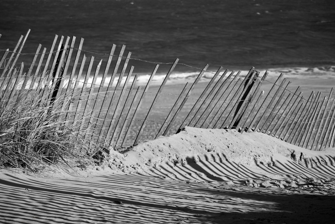 Sandy Beach Fence at the Shore - Black & White Coastal Landscape Photograph Wall
