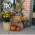 FALL PORCH PACKAGE- $90