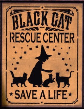 Primitive witch Black Cats rescue center sign Halloween decorations Humane