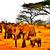 Herd Of Elephants Cross Stitch Pattern - Instant Digital Downloadable Pattern