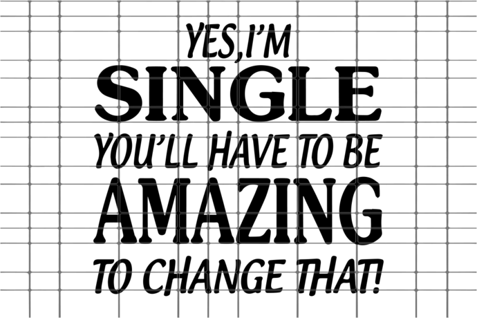 I'm single you'll have to be amazing to change that