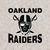 Oakland raiders, raider football, oakland, raider nation, oakland raiders gift,