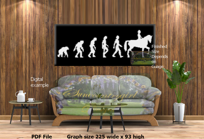 The Evolution of the Equestrian 225 x 93