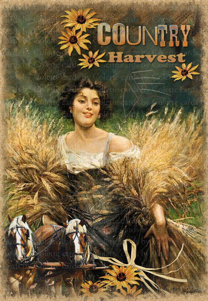 Country Harvest Digital Collage Greeting Card2435