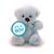 Button Teddy