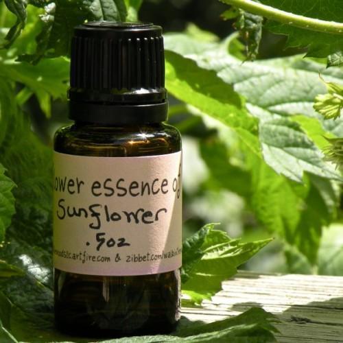 Sunflower Flower Essence- .5 ounce
