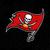 Tampa Bay Buccaneers Digital Cut Files Svg, Dxf, Eps, Png, Cricut Vector,