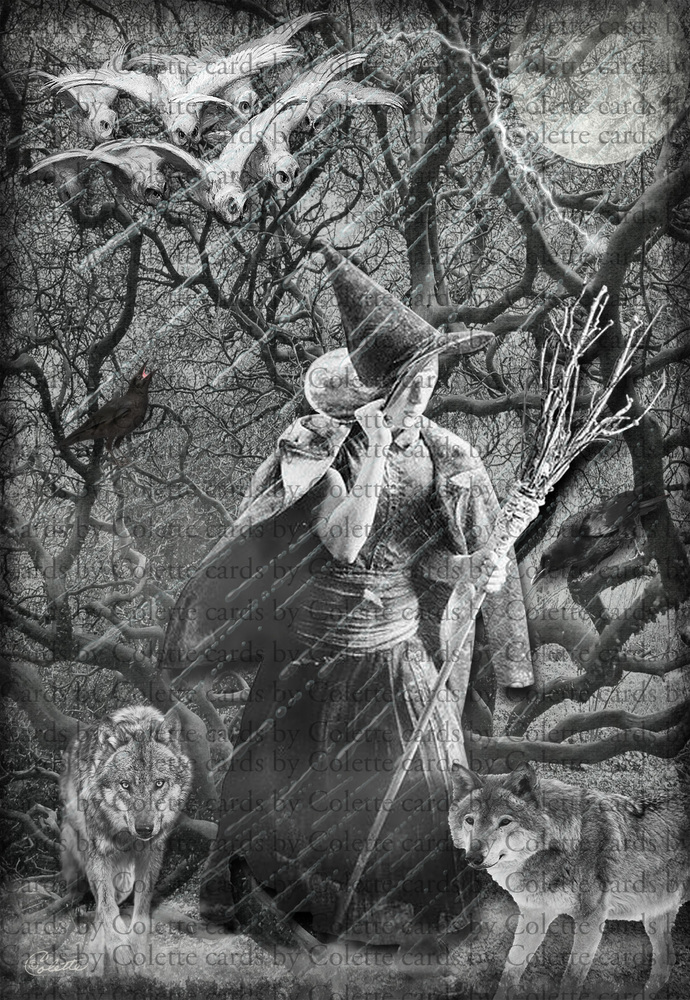 Halloween Witch and Wolves Digital Collage Greeting Card1296
