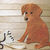 2pc Puppy Shoe Cutting Die Set Dog LIMITED QUANTITY