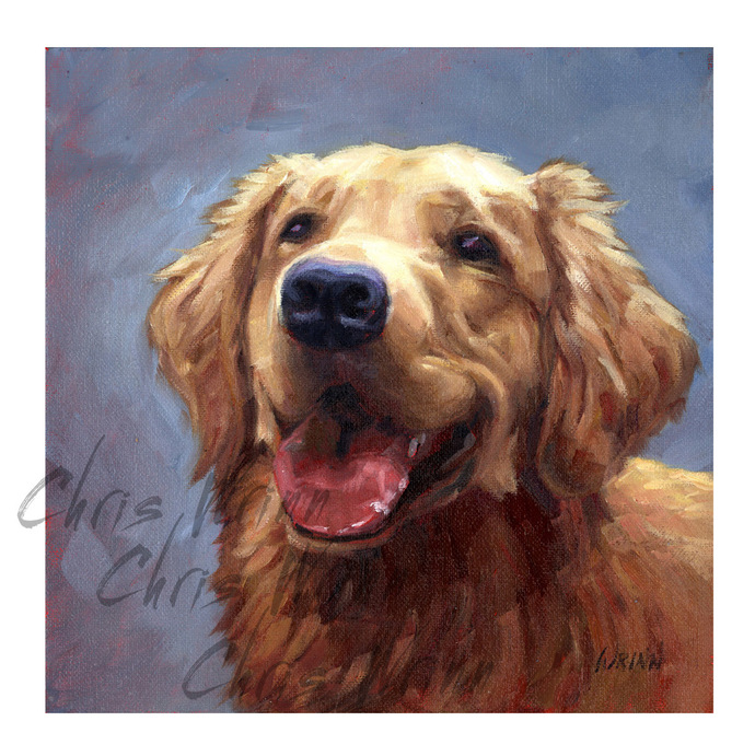 Pet Portraits, Dog Paintings, Cats, Birds, Any Type of Pet Portrait, 8x8 inches