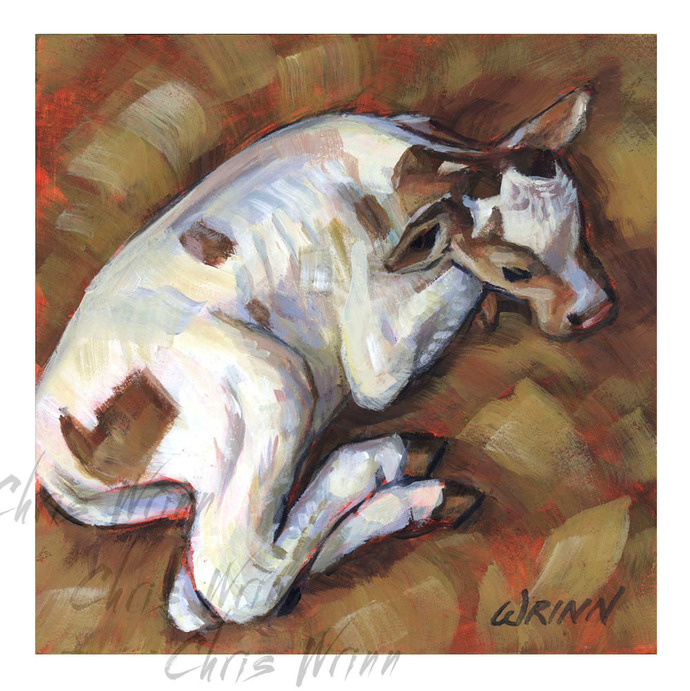 Sweet White Calf Painting, 6x6 inch Panel, Cow painting, Farmhouse Art,