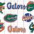 Florida Gator Svg,football svg,football gift,Florida  university, Florida