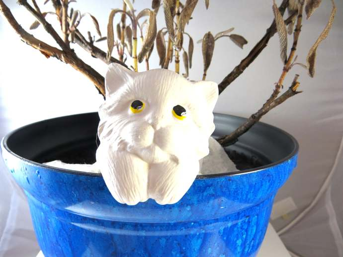 Clearance - ceramic white baby cat plant pot sitter