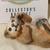 Stone Critters, Lion Cub Playing, Vintage Figurine, Lion Cub Figurine, Clay