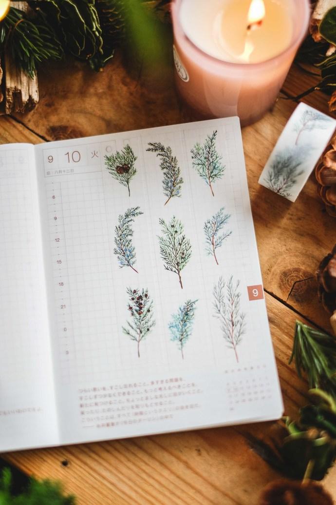 London Gifties original watercolour design washi tape - Evergreen Foliage - 2cm