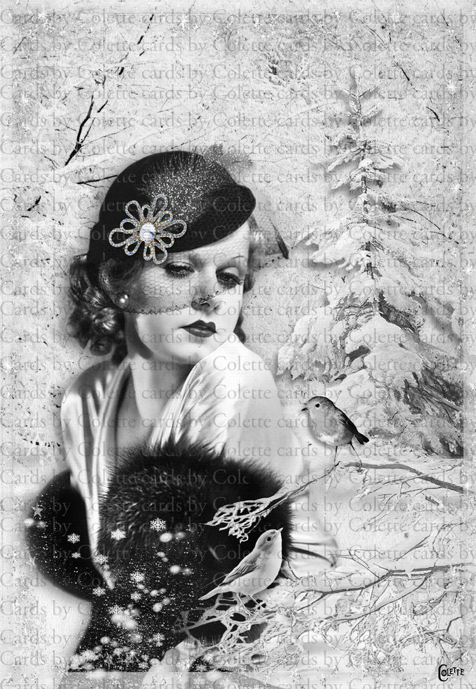 Christmas Lady and Winter Birds Greeting Card2480