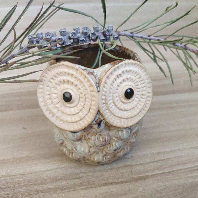 Cute Design owl pots for plants,Gift for Him, Gift for Her, Unique